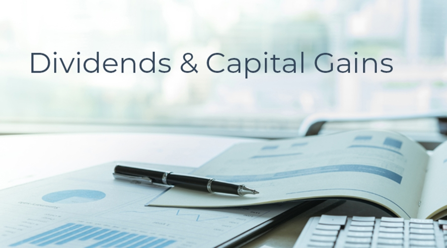 2019 Capital Gains and Dividends